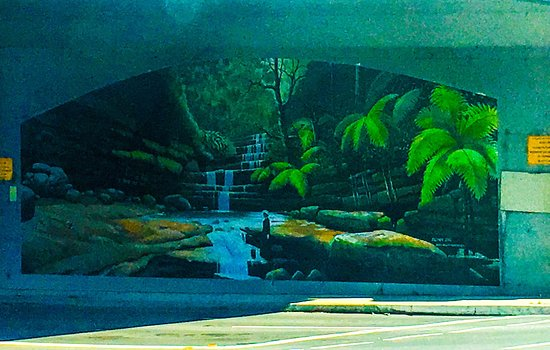 Mural depicting the Blue Mountains Flora and cascades ( painted on the Railway underpass in Hazelbrook NSW)