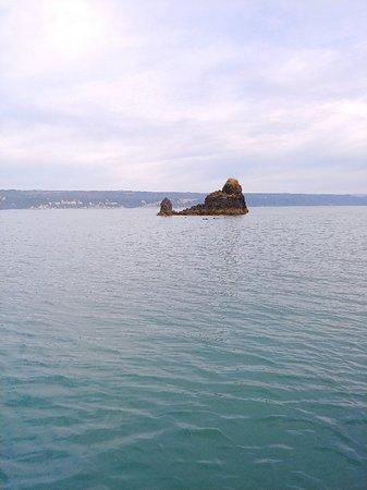 Halibut Cove Photo