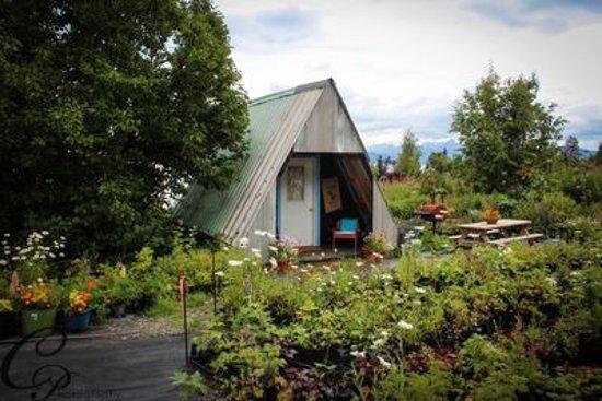 Fritz Creek, AK: Aframe Cabin