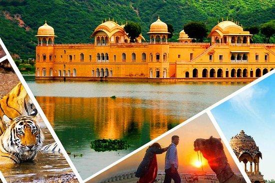 Shrishti Tour and Travels