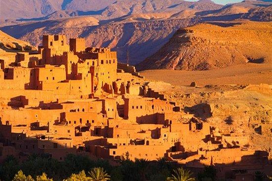 Sahara View Tours