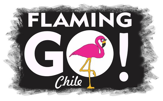Flaminggo Chile