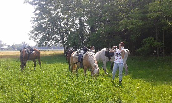 Rauscedo, Italia: Passeggiate tra amici