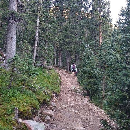 Amazing Alpine Adventure