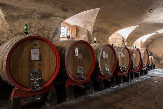 San Donato in Collina, Italien: Wine cellar