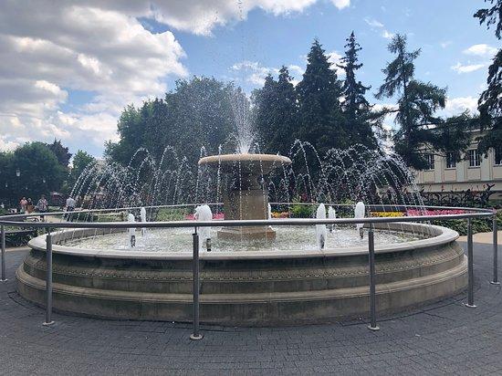 Park Sosnowy