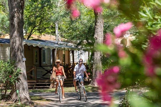 Abri De Camargue Le Grau Du Roi France Tarifs 2020 Mis A Jour Et Avis Camping Tripadvisor