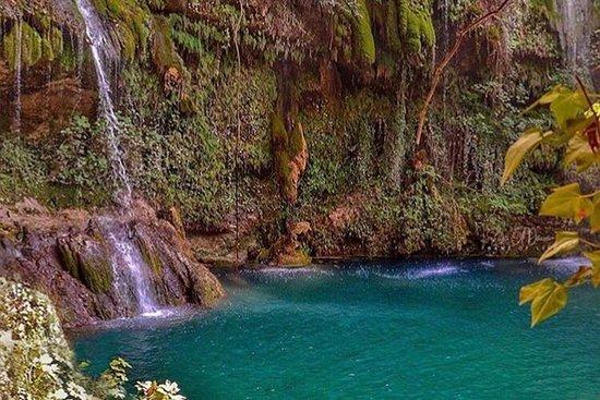 Lebanon Daily Trips