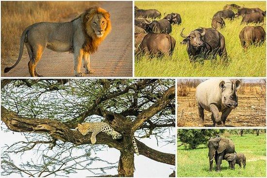 匹兰斯堡国家公园的5大野生动物园体验