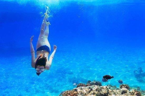 Snorkling en Gozo