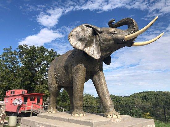 Jumbo The Elephant Monument Image