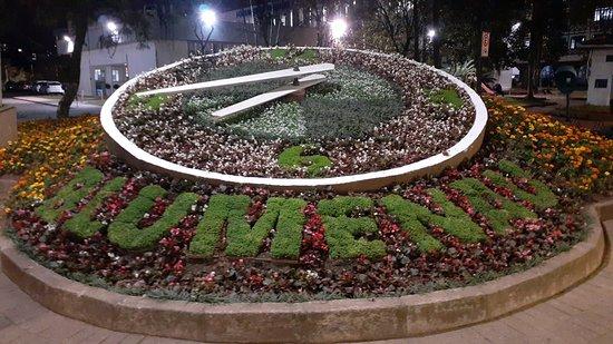 Relógio das Flores (Blumenau) - ATUALIZADO 2020 O que saber antes de ir -  Sobre o que as pessoas estão falando - Tripadvisor