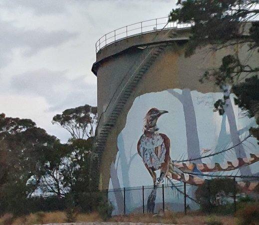 Lyrebird Mural