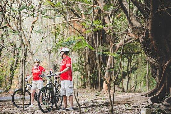 Tour en bicicleta por la selva desde...