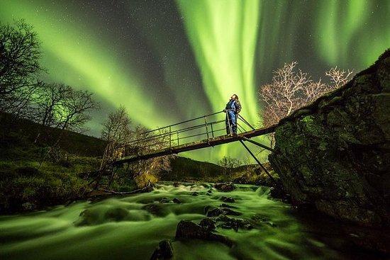 Avventura nell'aurora boreale con
