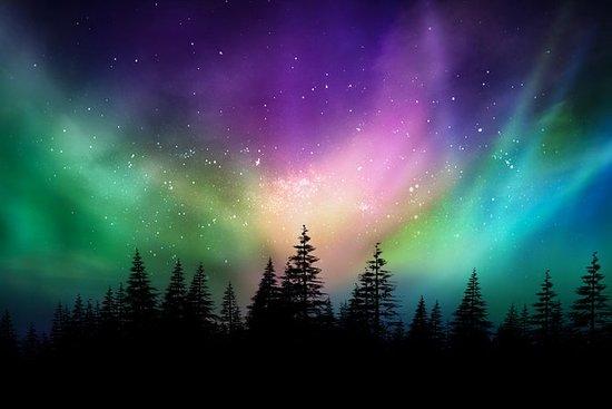 Northern Light: Lille gruppetur med...