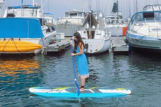 Kayak o Paddleboard con leones...