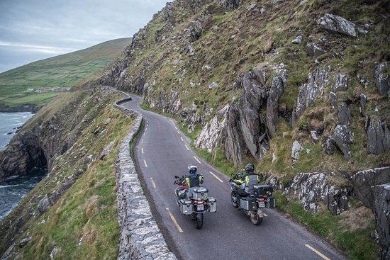 Celtic Rider