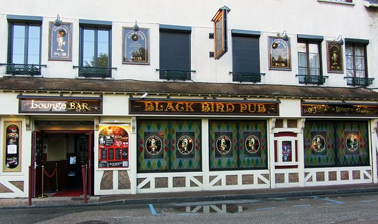 Le BLACK BIRD® 사진