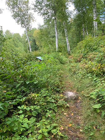 Hackensack, MN : Deep Portage Conservation Reserve and Learning Center