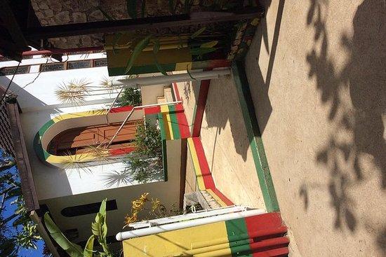 Visita al museo Nine Mile Bob Marley