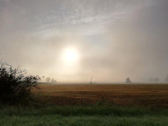 Very mystical and beautiful morning near Michaelbeuern!