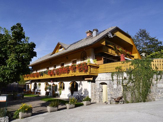 Guest House Kveder