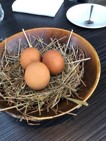 Een nestje met eitjes die vakkundig geopend zijn met een heerlijke vulling