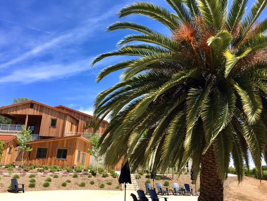 """Geyserville, CA: Cast Wines Tasting Room and """"Beach"""""""