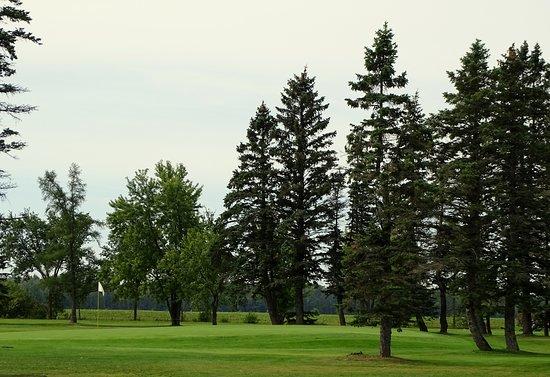 Club de Golf Saint-Janvier Inc.
