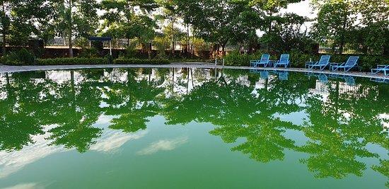 Valokuva: Kohalpur
