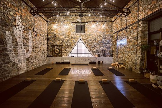 The Cactus Yoga Studio