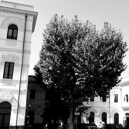 Stazione Caltanissetta Centrale