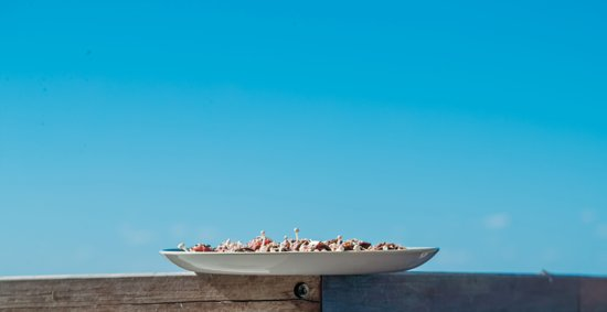 Caves Beach, Australia: Blue skies and delicious meals - why don't you come and try for yourself?