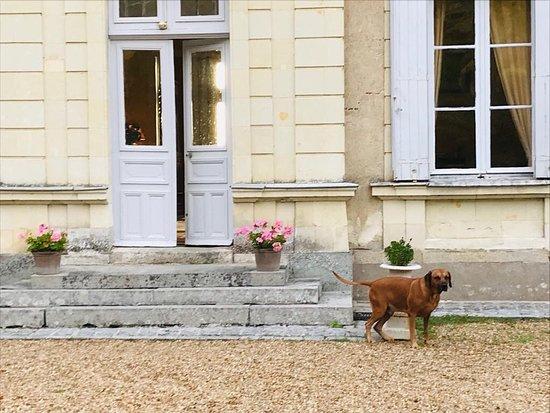 Bilde fra Saint-Clement-de-la-Place
