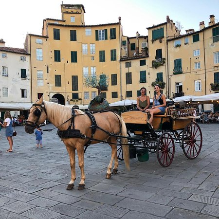 Lucca Horse Carriage