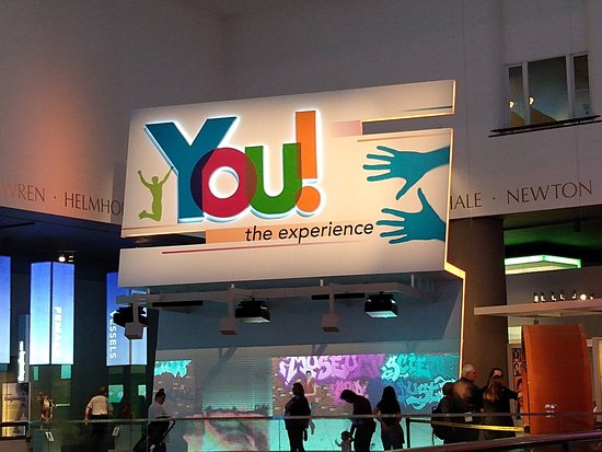 Museum of Science and Industry Chicago Plus Giant Dome Film: you the experience