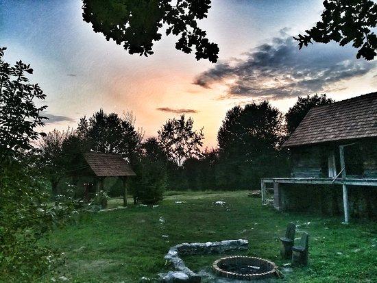 Belavici, Kroatia: Treehouse