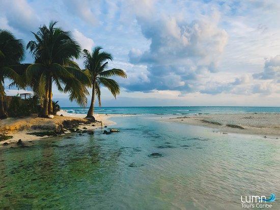 Luma Tours Caribe: Punta Esmeralda beach.