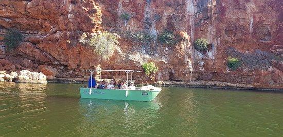 Ningaloo Safari Tours