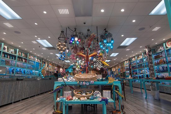 Turquoise Gallery