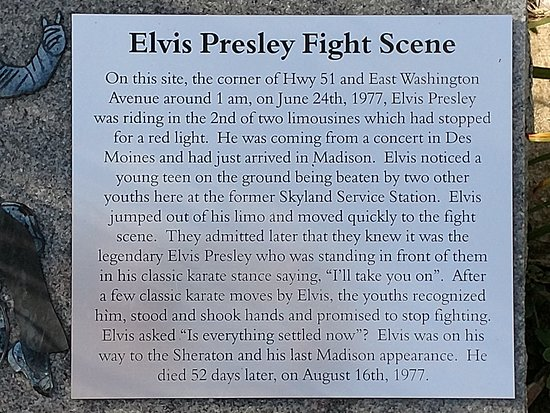 Elvis Fight Site Mini-Monument
