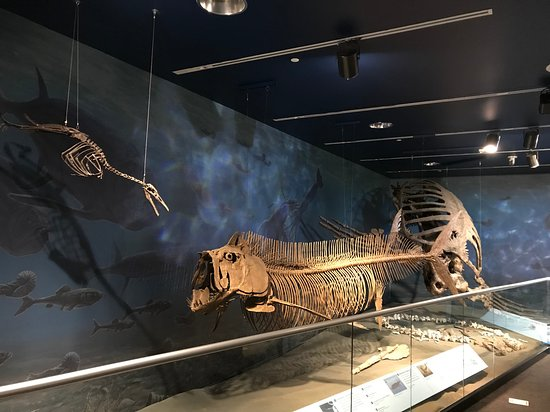 North Dakota Heritage Center Amp State Museum 2019 Bismarck