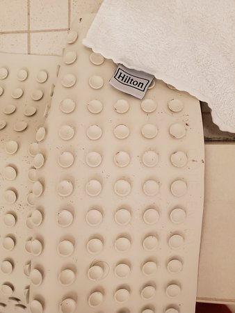 Horrible mold in the bathroom