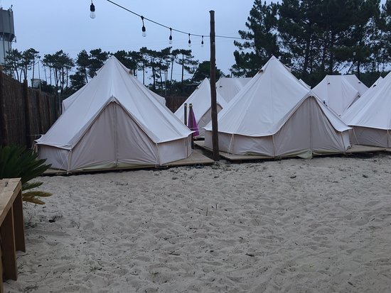 Dreamsea Surf Camp Image