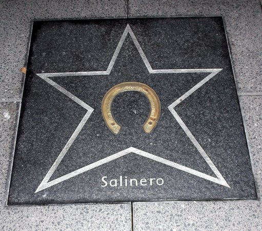 ‪Walk of Fame in der Soers‬