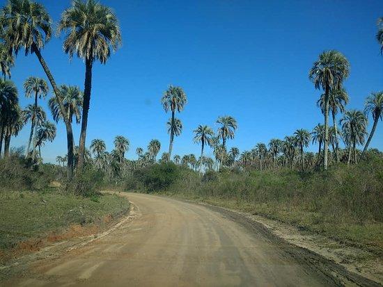 El Palmar National Park 사진