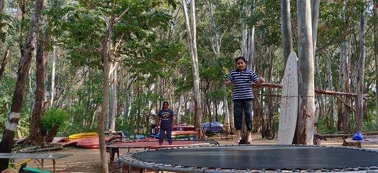 Anaimalai Foto