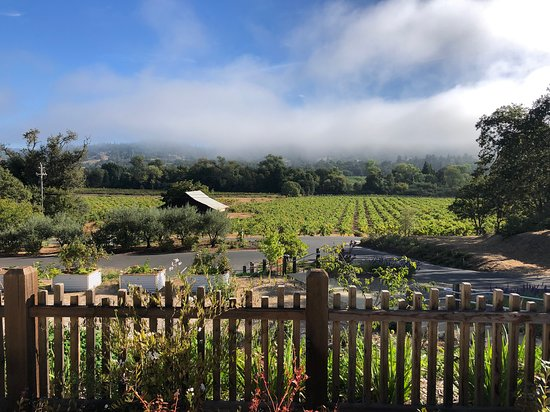 From the tasting patio overlooking the vegetable planters and the old barn aside zinfandel old vines.