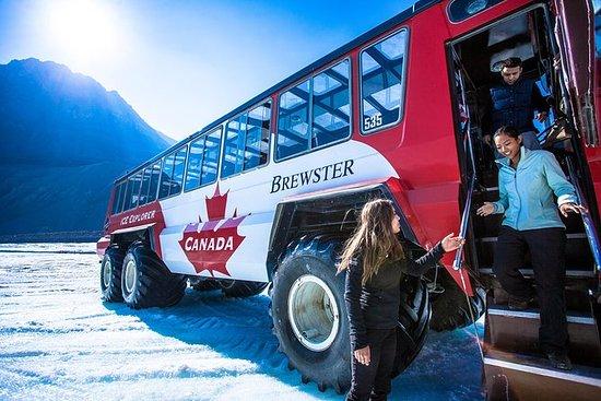 Excursión al glaciar en vehículo Ice...